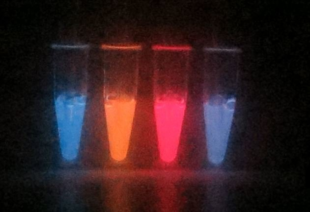 A fluorophore is added and changes the color of the luciferase based system.