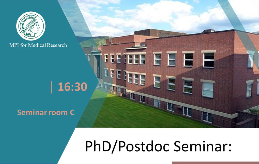 PhD and Postdoc Seminars