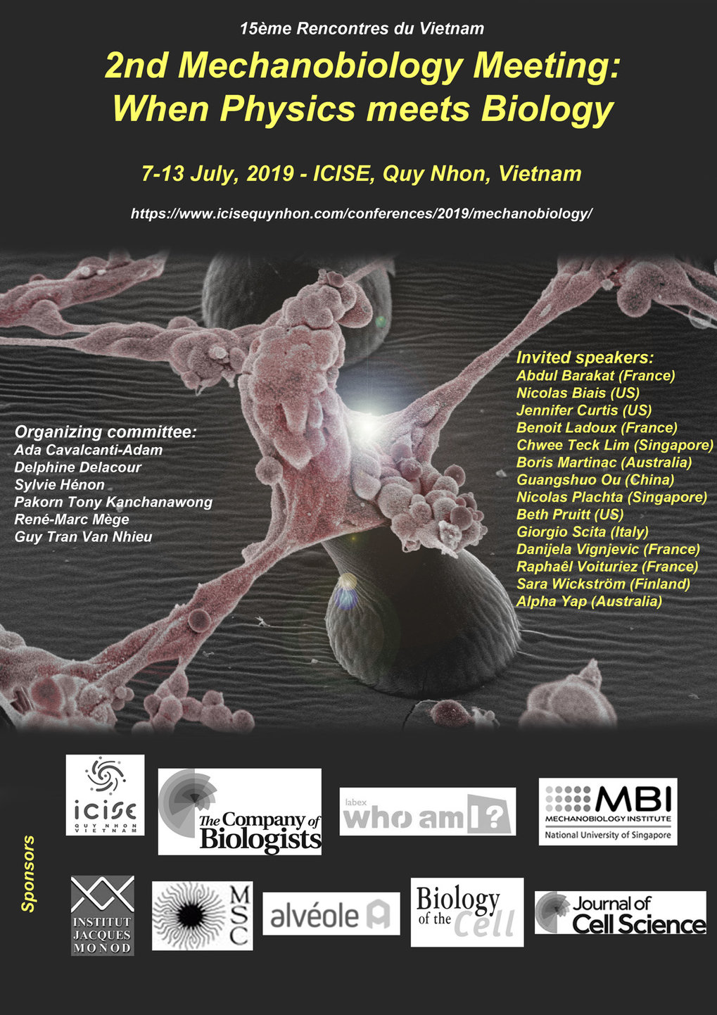 Mechanobiology meeting: when Physics meets Biology