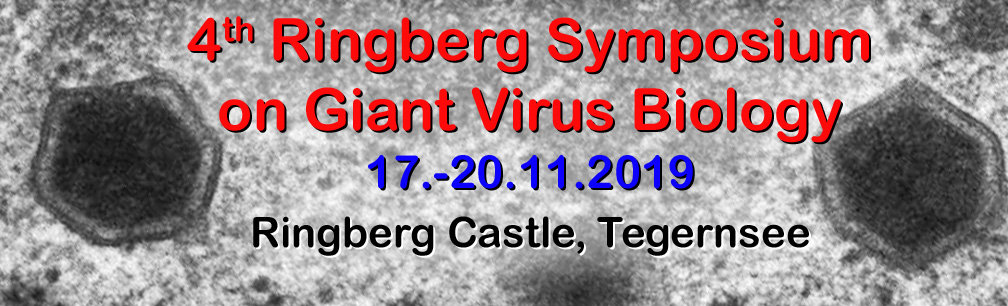 4th Ringberg Symposium on Giant Virus Biology