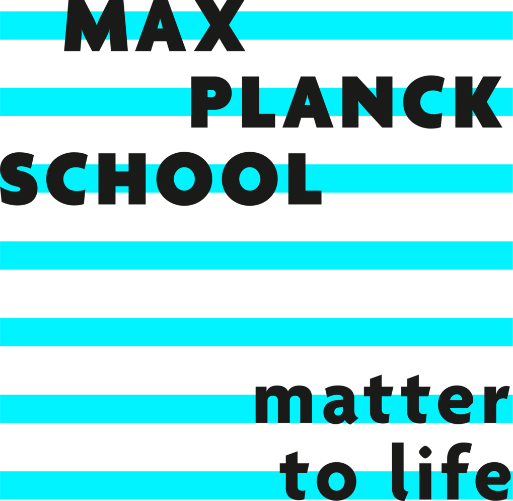 Website of the School